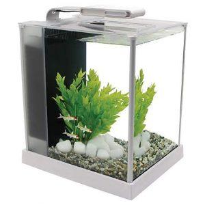 Fluval 2.6 Gallon Spec III Aquarium Kit