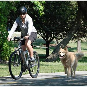 Pet Ego Universal Bike Cycleash, 18″ L X 2.5″ W