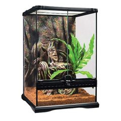 Exo-Terra Crested Gecko Kit, Small, 12″ L X 12″ W X 18″ H